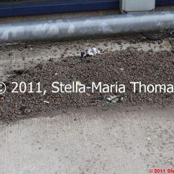 small-gravel-trap-001_6121101495_o