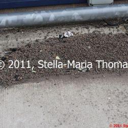 small-gravel-trap-002_6121645112_o