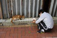 macau-2011---coloane-019_6352134420_o