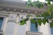 macau-2011---coloane-024_6351390175_o