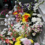macau-2011---saint-josephs-seminary-003_6352126936_o