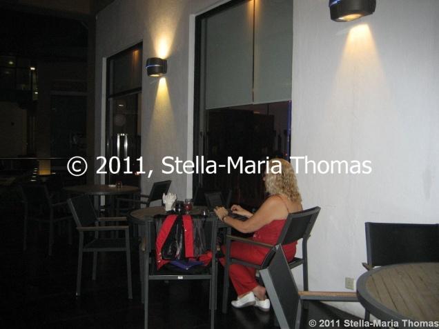 pousada-de-mong-ha---working-on-the-terrace-004_6389168939_o