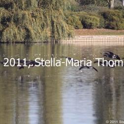 willen-lake-october-2010-003_6261088238_o