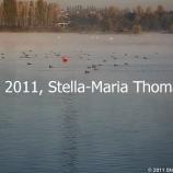 willen-lake-october-2010-010_6260558333_o