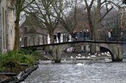 canal-trip-bruges-075_23427805259_o