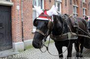 carriage-ride-bruges-031_23169083543_o
