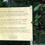 MOOMINWORLD, NAANTALI 010