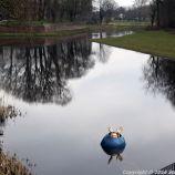 shertogenbosch-064_25587267741_o
