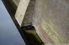 shertogenbosch-065_25053206243_o