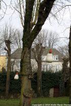 shertogenbosch-086_25561128882_o