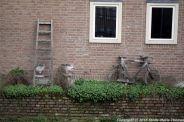 shertogenbosch-117_25679741365_o