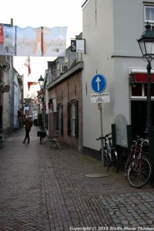 shertogenbosch-121_25378874810_o