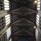 st-johns-cathedral-shertogenbosch-003_25562823332_o