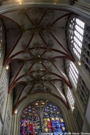 st-johns-cathedral-shertogenbosch-009_25588850431_o