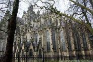 st-johns-cathedral-shertogenbosch-033_25655263496_o