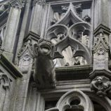 st-johns-cathedral-shertogenbosch-040_25588732021_o