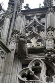 st-johns-cathedral-shertogenbosch-040_25588732021_o