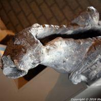 st-johns-museum-shertogenbosch-006_25050859944_o