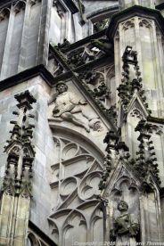 the-wonderful-climb-st-johns-cathedral-shertogenbosch-001_25562578392_o
