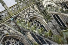 the-wonderful-climb-st-johns-cathedral-shertogenbosch-002_25681302595_o