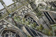 the-wonderful-climb-st-johns-cathedral-shertogenbosch-002_25681302595_o