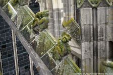 the-wonderful-climb-st-johns-cathedral-shertogenbosch-003_25588615061_o