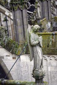 the-wonderful-climb-st-johns-cathedral-shertogenbosch-004_25380441860_o