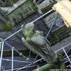 the-wonderful-climb-st-johns-cathedral-shertogenbosch-006_25655105176_o