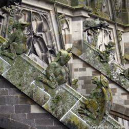 the-wonderful-climb-st-johns-cathedral-shertogenbosch-007_25588596911_o