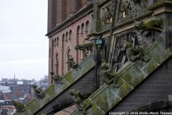 the-wonderful-climb-st-johns-cathedral-shertogenbosch-008_25562548182_o