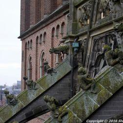 the-wonderful-climb-st-johns-cathedral-shertogenbosch-008_25562548182_o