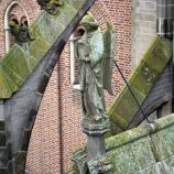 the-wonderful-climb-st-johns-cathedral-shertogenbosch-013_25588572701_o