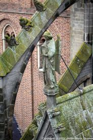 the-wonderful-climb-st-johns-cathedral-shertogenbosch-013_25588572701_o
