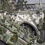 the-wonderful-climb-st-johns-cathedral-shertogenbosch-017_25380385700_o