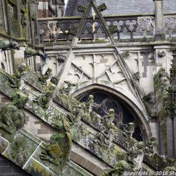 the-wonderful-climb-st-johns-cathedral-shertogenbosch-017_25380385700_o