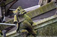 the-wonderful-climb-st-johns-cathedral-shertogenbosch-018_25681235245_o