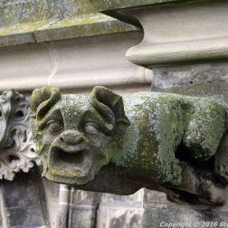 the-wonderful-climb-st-johns-cathedral-shertogenbosch-019_25054492613_o