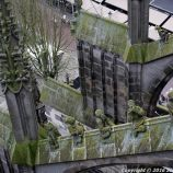 the-wonderful-climb-st-johns-cathedral-shertogenbosch-020_25562498812_o