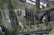 the-wonderful-climb-st-johns-cathedral-shertogenbosch-020_25562498812_o