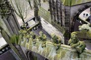 the-wonderful-climb-st-johns-cathedral-shertogenbosch-021_25681223895_o