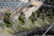 the-wonderful-climb-st-johns-cathedral-shertogenbosch-023_25588531111_o