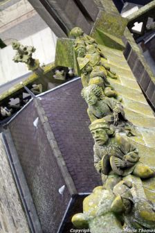 the-wonderful-climb-st-johns-cathedral-shertogenbosch-025_25054468443_o