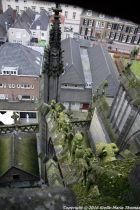 the-wonderful-climb-st-johns-cathedral-shertogenbosch-040_25054407933_o