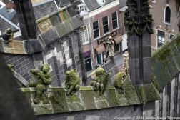 the-wonderful-climb-st-johns-cathedral-shertogenbosch-041_25654962206_o