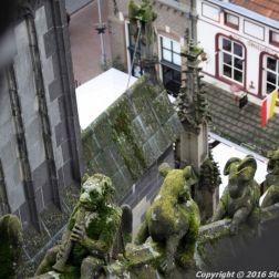the-wonderful-climb-st-johns-cathedral-shertogenbosch-042_25050608514_o
