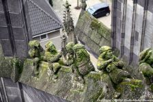 the-wonderful-climb-st-johns-cathedral-shertogenbosch-043_25588451961_o