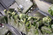 the-wonderful-climb-st-johns-cathedral-shertogenbosch-048_25588431051_o