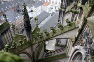 the-wonderful-climb-st-johns-cathedral-shertogenbosch-053_25054358783_o