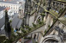 the-wonderful-climb-st-johns-cathedral-shertogenbosch-054_25054355133_o