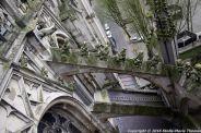 the-wonderful-climb-st-johns-cathedral-shertogenbosch-055_25562361812_o